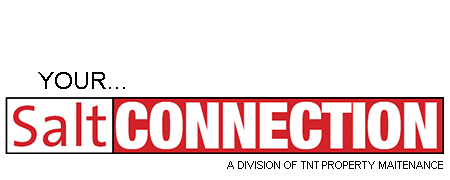Salt Connection Logo